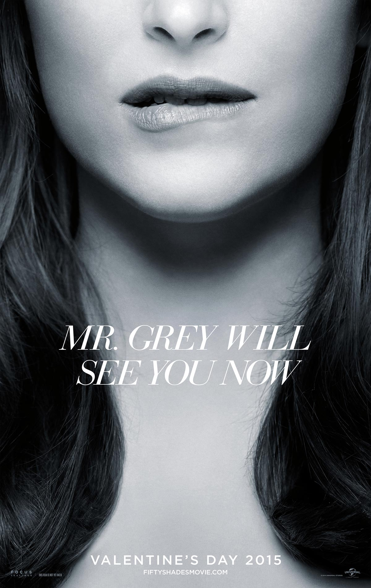 Dreamogram Iconisus – Key Art – Movie Poster – Fifty Shades of Grey